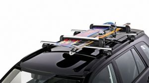 Lockable Ski/Snowboard Carrier