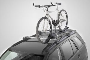 Lockable Bicycle Carrier