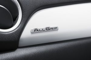 Dashboard Emblem 'Allgrip'