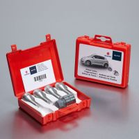 Alloy Wheel Locking Bolt Set