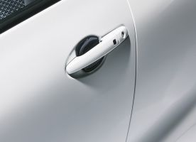 Door Handle Escutcheon - Carbon